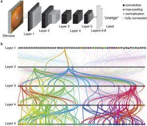 Exemplo de deep learning, redes neurais, neural networks